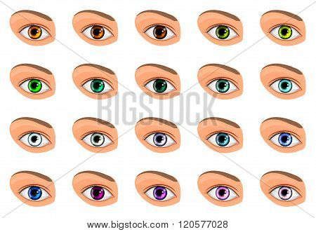 illustration of colored contact lenses different colors