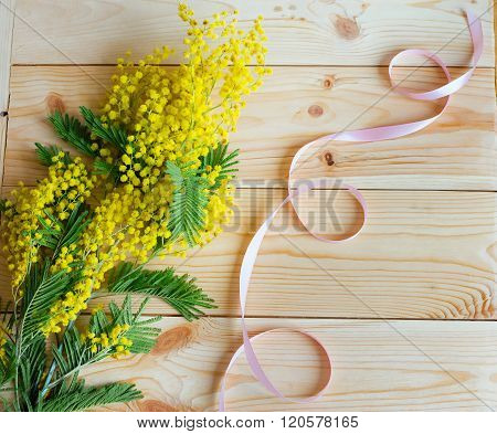 A Sprig Of Mimosa With A Pink Ribbon On The Wooden Background