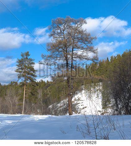 Nature Park Deer Streams. Russia, Ural