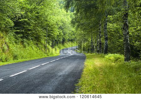 Road Of Pirineos (catalunya, Spain)
