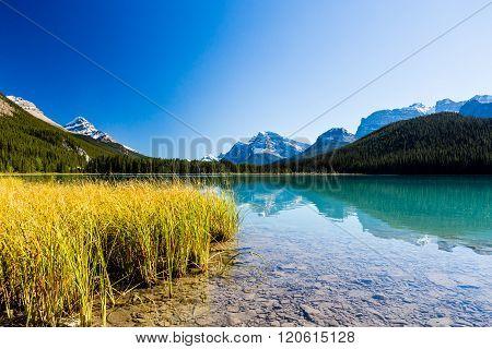 Sunwapta Lake, Jasper National Park In Alberta, Canada