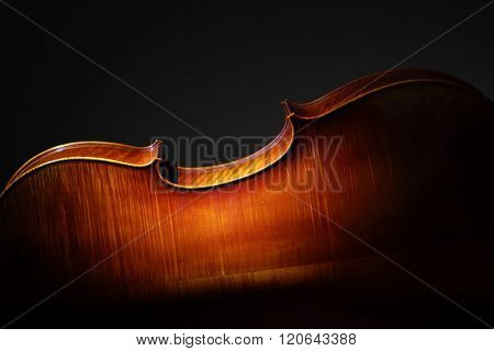 Silhouette of back of Cello on black background with copy space for music concept