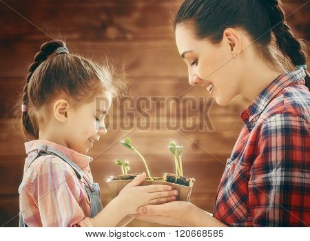 Cute child girl helps her mother to care for plants. Happy family engaged in gardening in the backyard. Mother and her daughter watch as a growing sprout. Spring concept, nature and care.