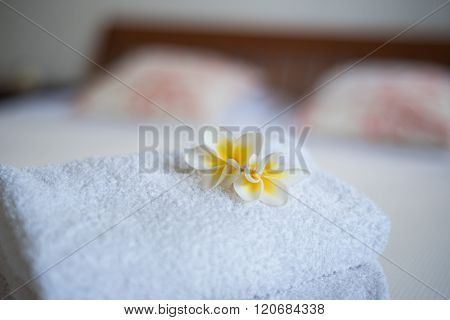 Frangipani Flower On The Bed