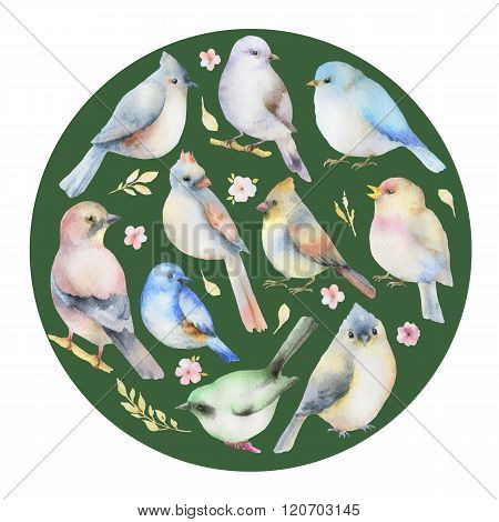 Watercolor set of birds  in the shape of a circle.  Hand painted illustration on white background. Elements for design of congratulatory cards, invitations, business cards and more.