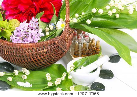 Globules medicinal herbs healing stones