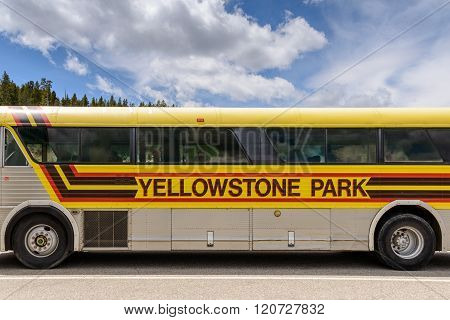 Yellowstone Park Tour Bus