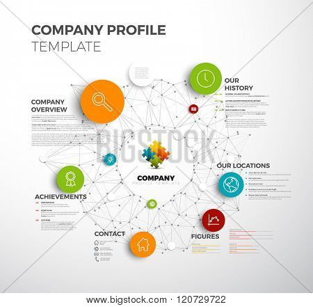Vector Company infographic overview design template with network in the background