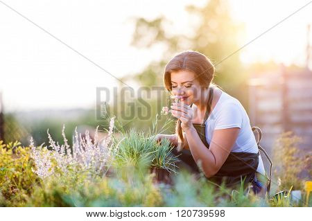 Young gardener in garden smelling flower, sunny nature
