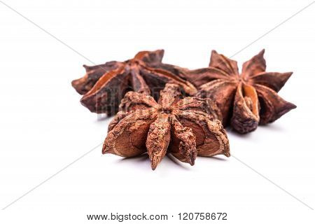 Star anise spice fruits and seeds isolated on white background