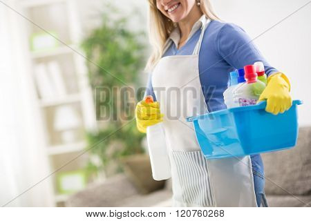 Young maid hold in hands house cleaning products