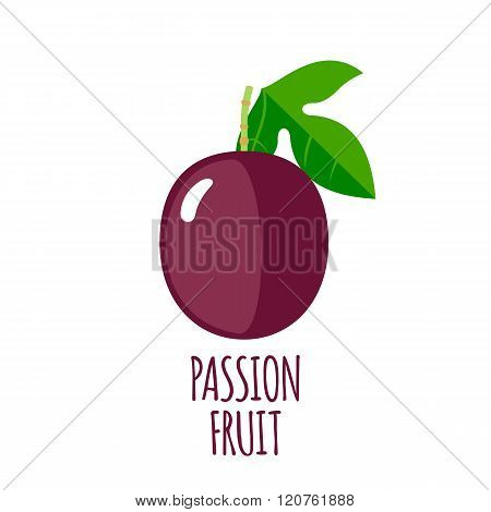 Passion fruit icon in flat style