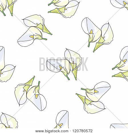 Pattern with hand drawn decorative calla