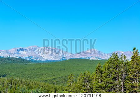 Dense Forest And Mountain Range