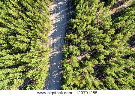 Dirt Road Aerial