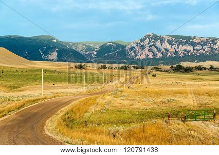 Dirt Road To Bighorn Mountains