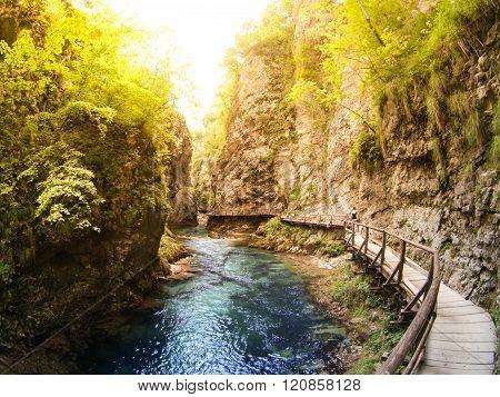 Wooden path in Vintgar gorge