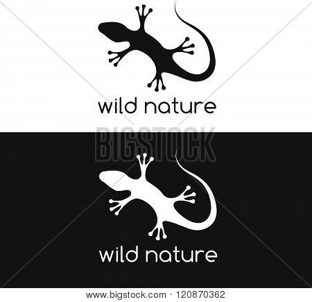 Lizard Vector Design Template . Concept Of Graphic Clipart Work