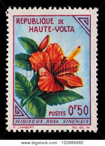 UPPER VOLTA - CIRCA 1963: a stamp printed in Upper Volta shows Monkeys, Day of the stamp, circa 1963.
