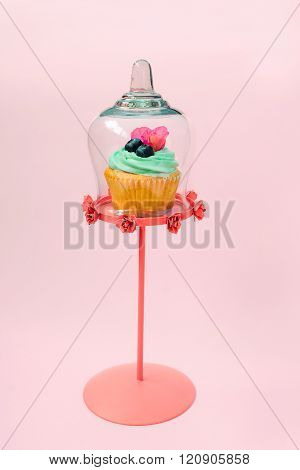 Cupcakes with butter cream and vanilla with blueberry with pink flowers  in glass cooking hood on pi