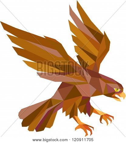 Peregrine Falcon Swooping Low Polygon