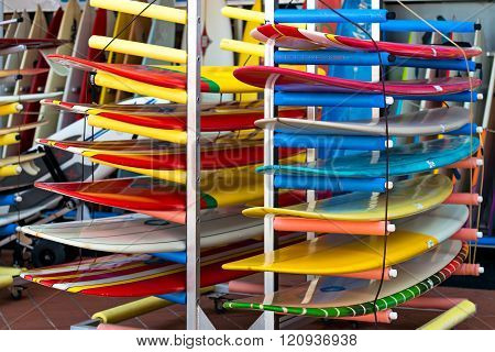 Surfing Boards In A Row