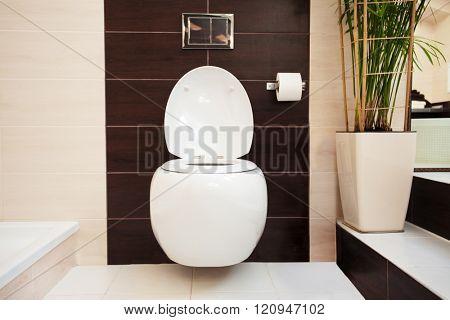 Hanging toilet in bathroom. Installation
