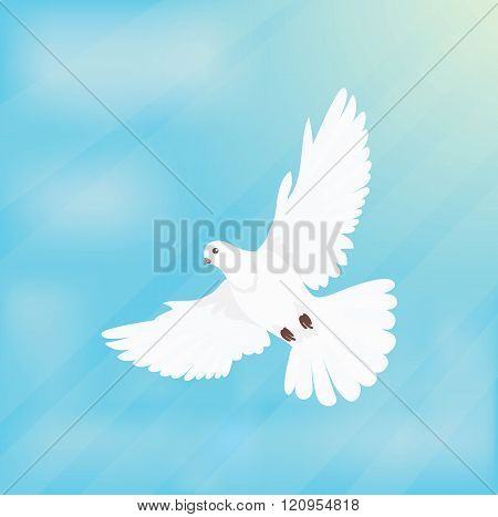 White Dove Soars in Space Design Flat