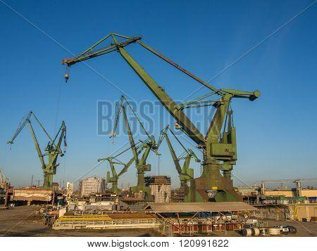Gdańsk Poland - September 27 2015:  Huge harbour cranes in the port of Gdańsk
