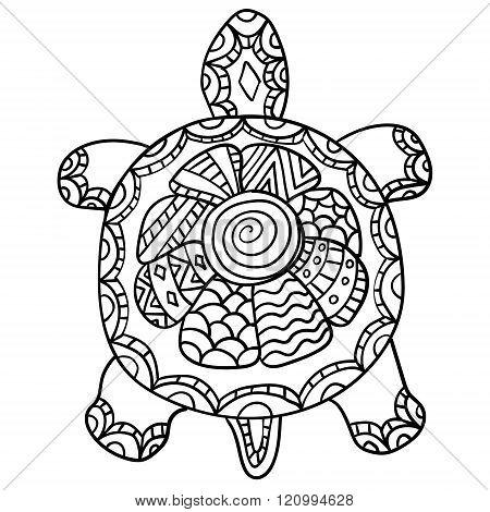 Drawing zentangle turtle,
