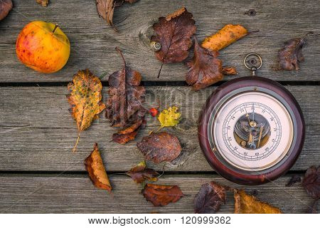 Barometer In The Autumn