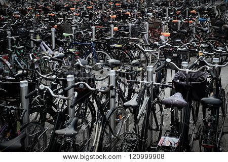 A Lot Of Bikes In The Centre Of City Copenhagen.