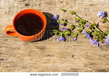 Cup With Chicory Drink And Blue Chicory Flowers On Rustic Wooden Table