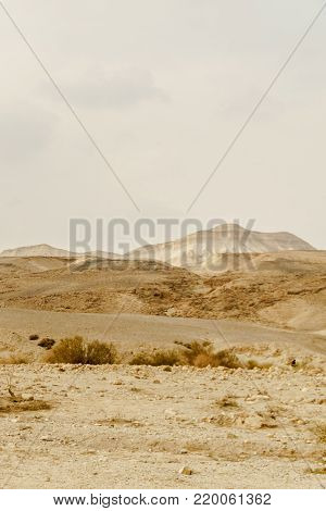 Verical landscape view on dry middle east wilderness in Israel. Valley of sand, rocks and stones in hot tourism place. Scenic outdoor view on wild desert. Summer heat sunlight with nobody on photo