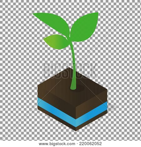 plant tree growing seedling in soil vector icon symbol in flat isometric design on transparent background. -stock vector