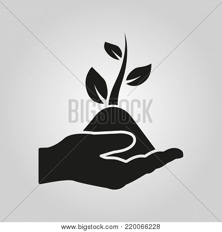 Hand holding sprout icon. Plant, organic, ecology, biology, spring symbol. Flat design. Stock - Vector illustration