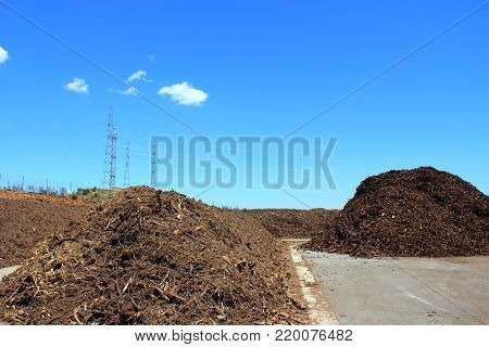 Rows of compost at a green recycle plant