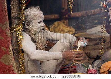 BABUGHAT, KOLKATA, WEST BENGAL / INDIA - 11TH JANUARY 2015 : Portrait of Hindu Sadhu with white beard, holy white ash applied on body and face, drinking tea.