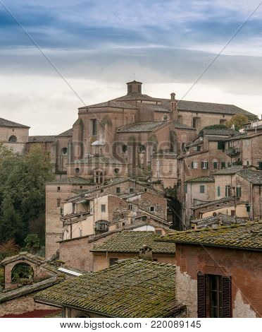 Aeria view l of  terra cotta rooftops in siena italy