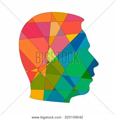 Psychology concept of man. distortion of perceiving world. Icons silhouette profile of man's head with pattern on background of colors triangles shape. Vector EPS 10 for page cover book