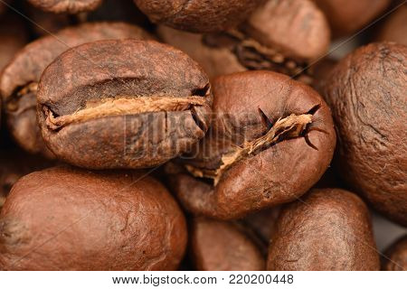 Coffe grains from Colombia in Quindio deparment