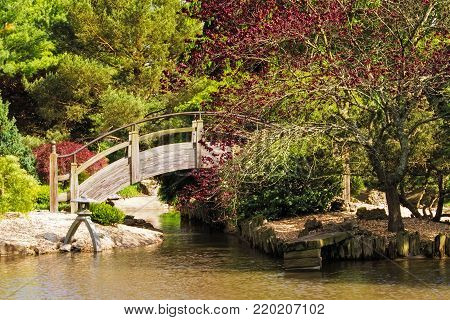 Arch wooden bridge over a pond at a Japanese style botanical garden in Missouri
