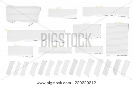 White ripped blank, ripped note, notebook paper strips, sheets, speech bubble, sticky tape for text or message stuck on white background.