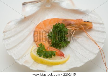 Decorated Shrimp