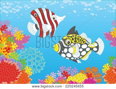 A funny butterfly fish and a clown triggerfish swimming in blue water over an amazing and colorful coral reef in a tropical sea, a vector illustration in cartoon style