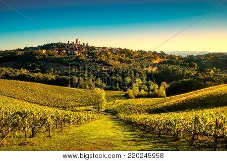 San Gimignano medieval town towers skyline and vineyards countryside landscape panorama on sunrise. Tuscany, Italy, Europe.