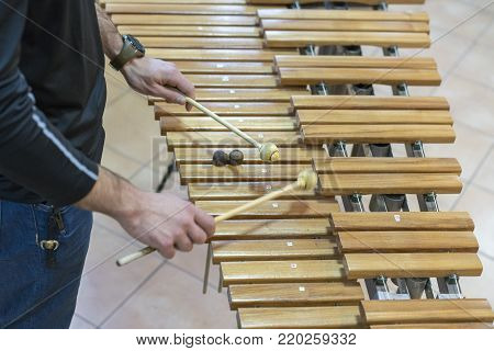xylophone, percussion instrument concept - closeup on wooden bars with four mallets in human hands