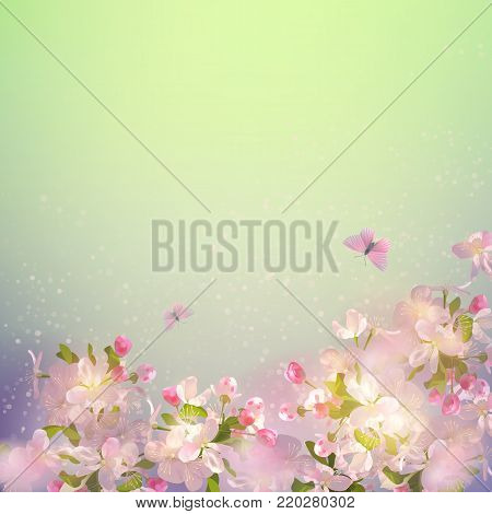 Vector background with spring apple blossom. Blossoming branch in springtime