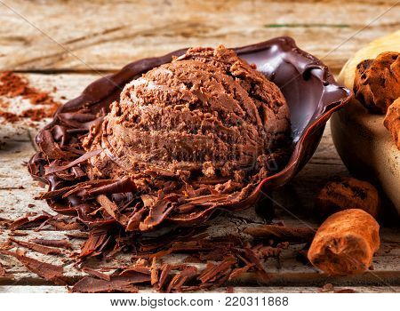 Artisan chocolate ice cream with cocoa and chocolate scrapings.