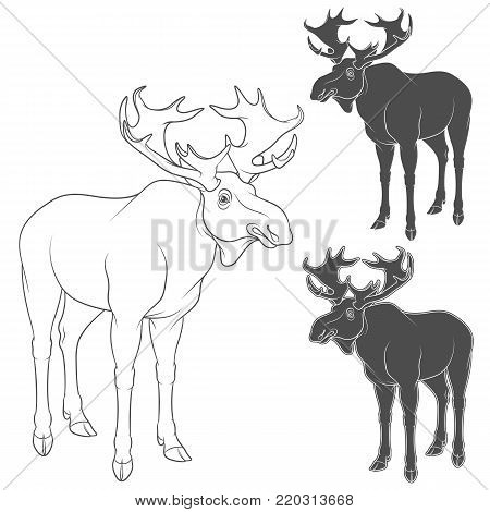 Set of black and white illustrations with moose, elk. Isolated vector objects on white background.